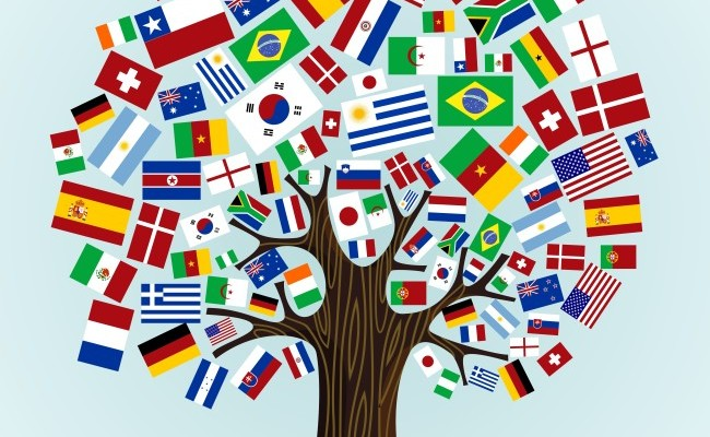 language diversity The linguistic diversity index measures the diversity of languages spoken in a  country click here to visit our language diversity layer on.