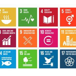 un-sustainabledevelopmentgoal